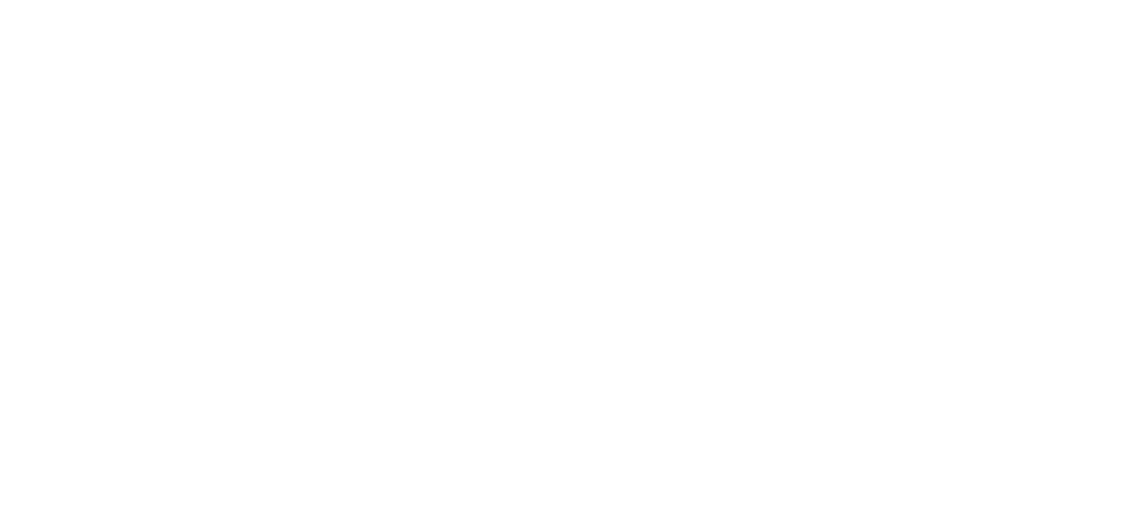 Reflex technology logo reverse